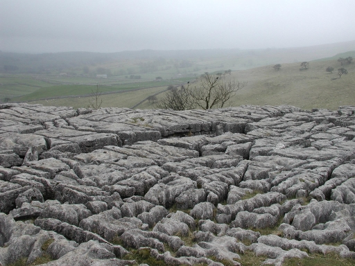Limestone pavements at Malham Cove - geograph.org.uk - 102247
