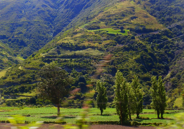 Montana's De Los Andes