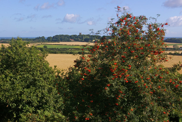 North from Wiveton Down - geograph.org.uk - 928839