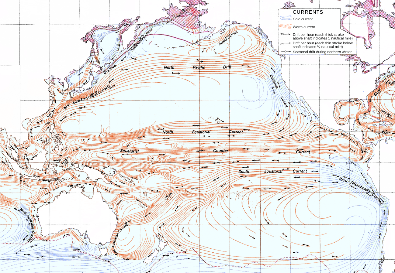Datei:Ocean currents 1943 for colorblind Pacific.png – Wikipedia