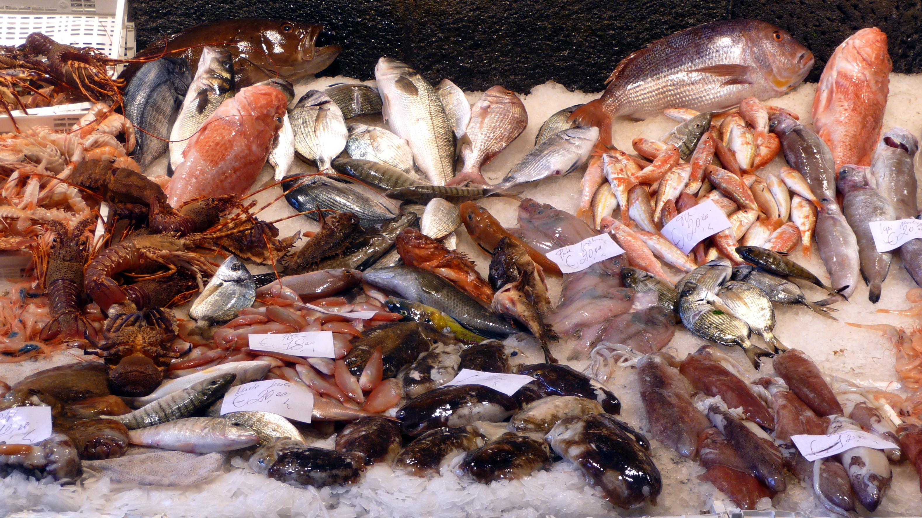 File pesce al mercato 1 jpg wikimedia commons for Florida fish market