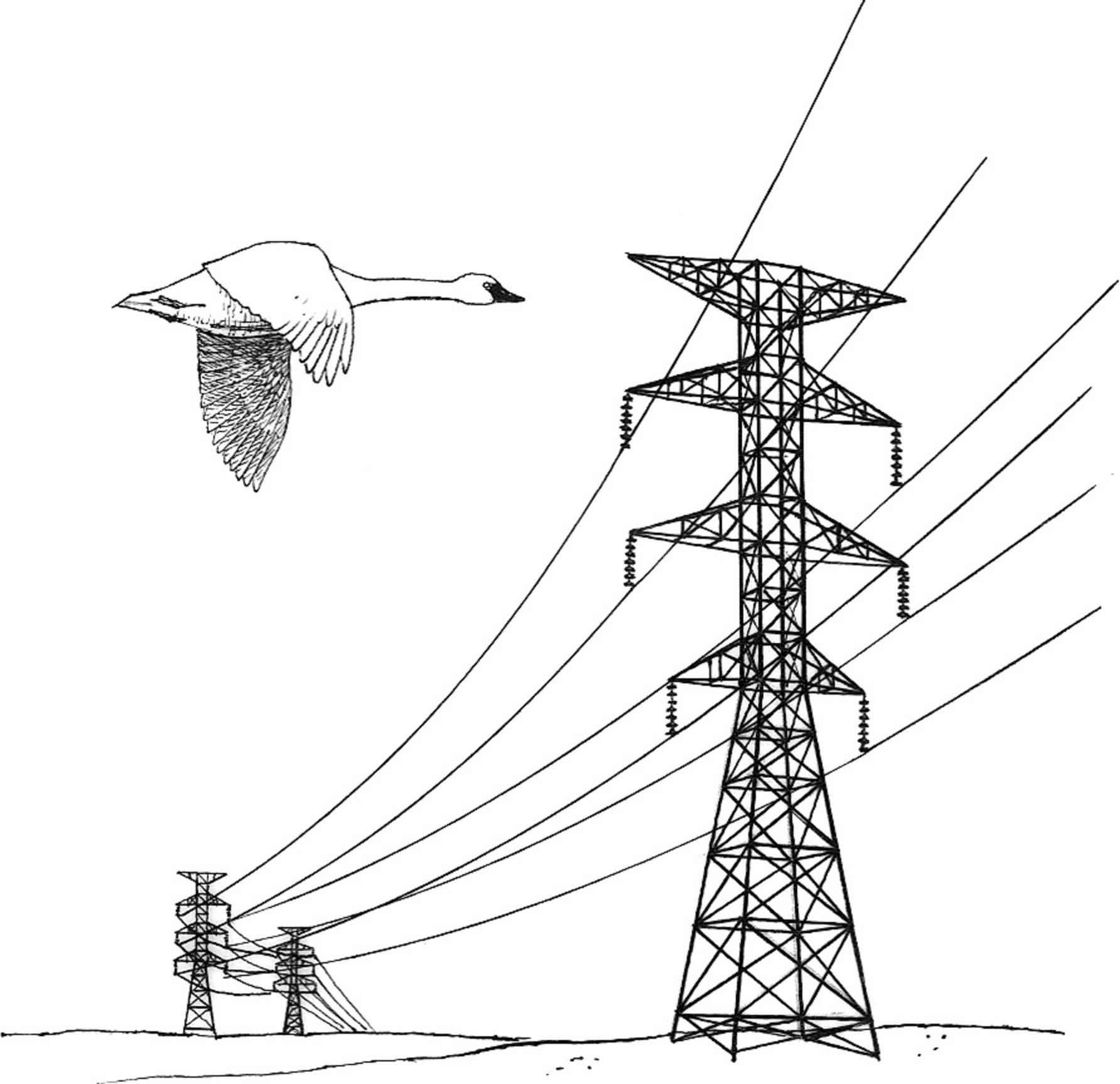Line Art Wikipedia : File power lines hazard illustration g wikimedia commons