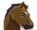 Profile avatar horse.png