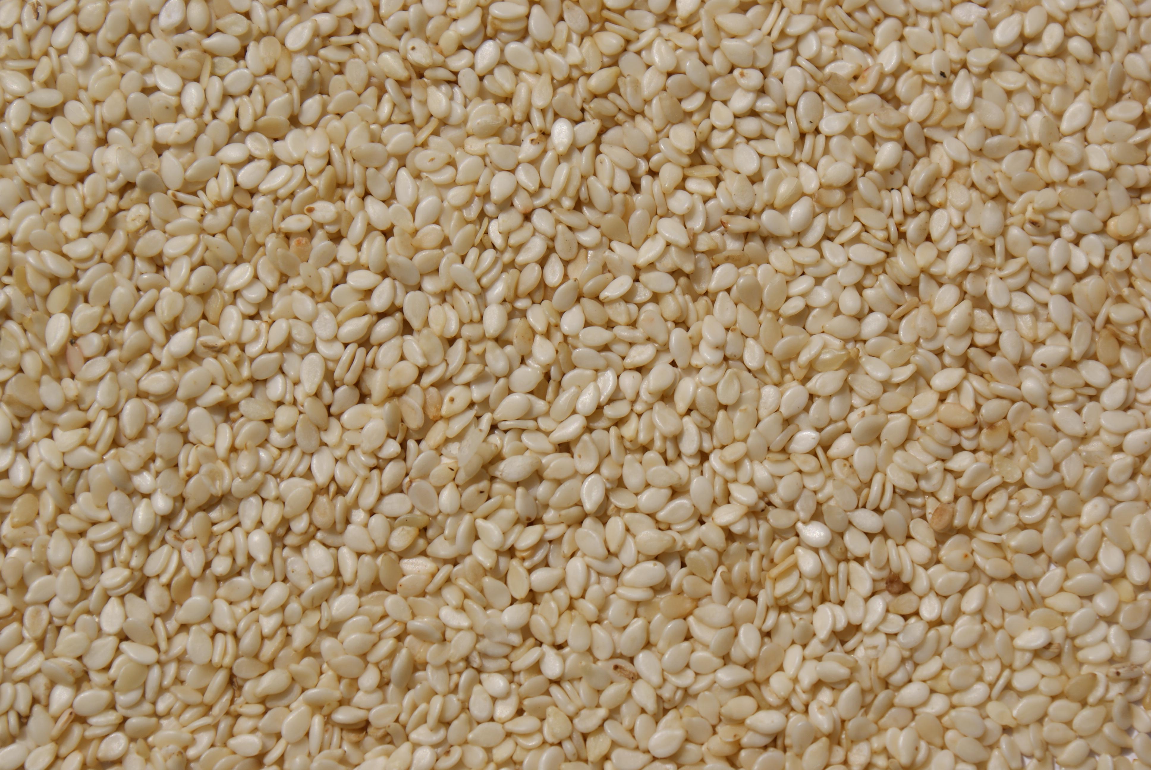 sesame production Soils, plant growth and crop production – growth and production of sesame – elly kafiriti and omari mponda ©encyclopedia.