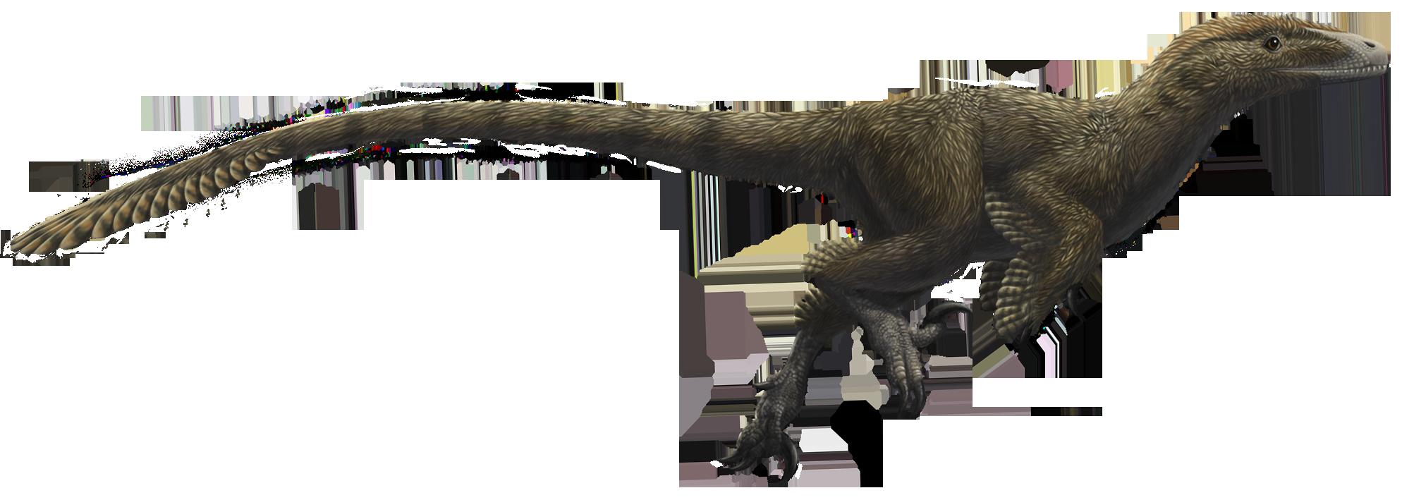 fileutahraptor ostrommaysorum flippedpng wikimedia
