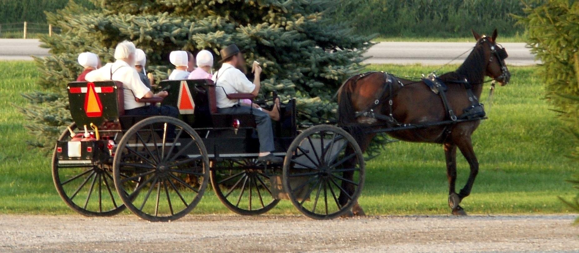 File:Amish people.jpg — Wikimedia Commons