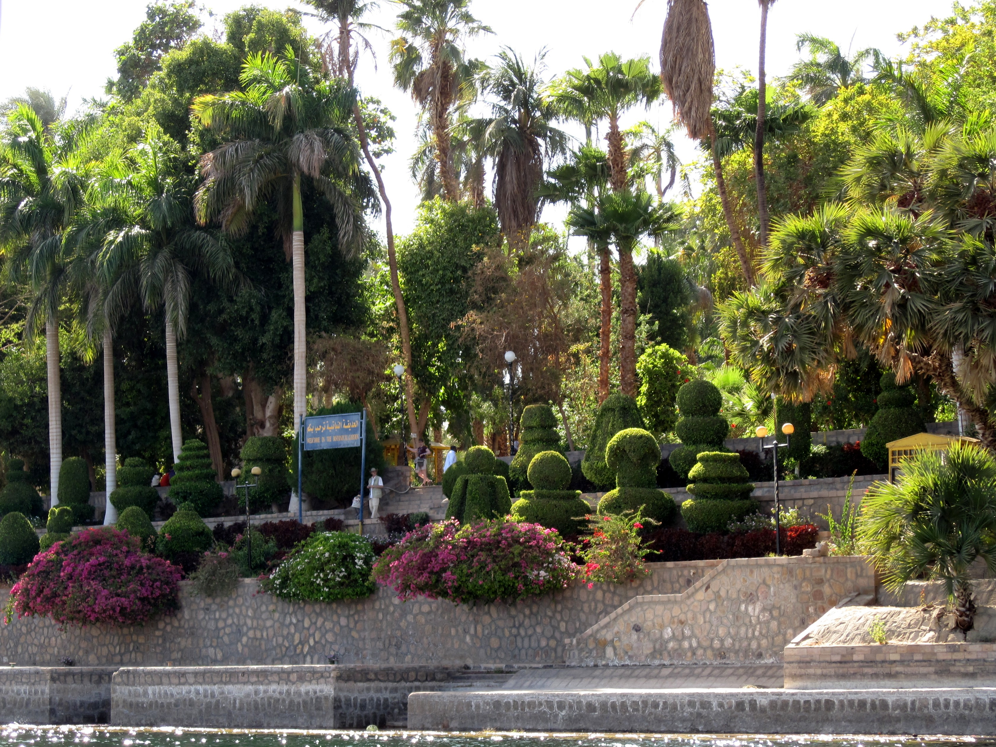 High Quality Aswan Botanical Garden 12
