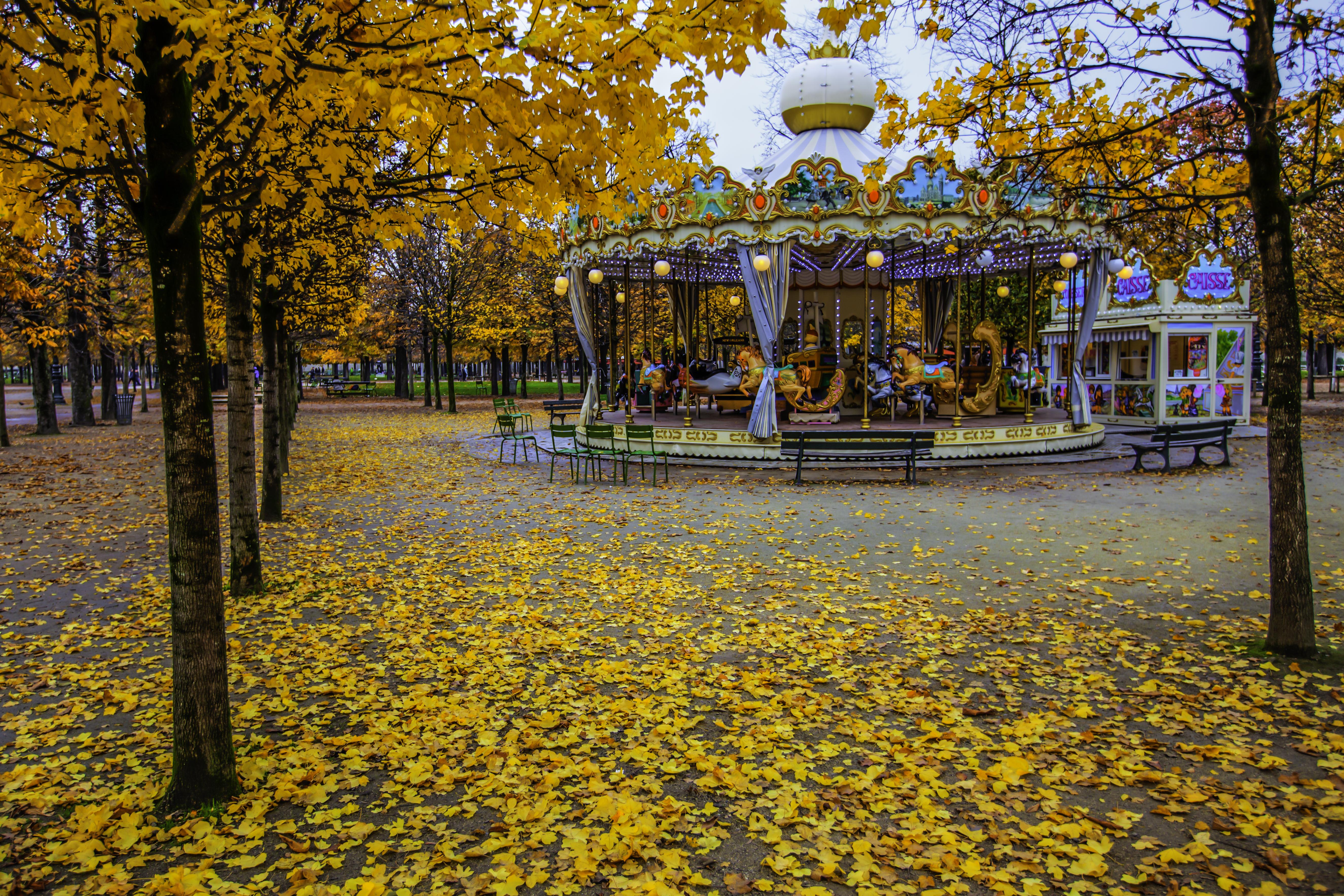 fileautumn tuileries garden paris 13 november 2012jpg - Tuileries Garden
