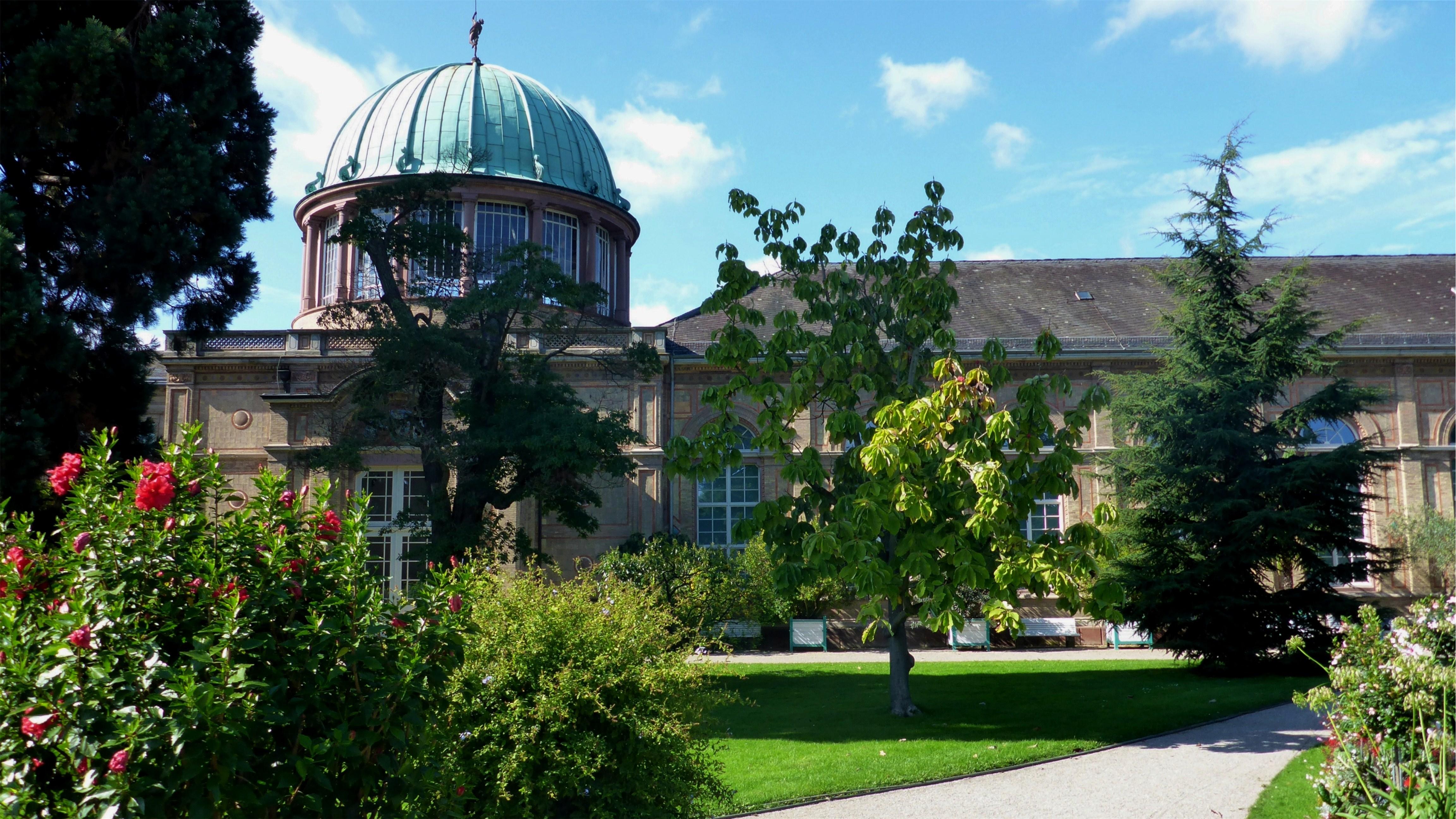 Filebotanischer Garten Karlsruhe 3jpg Wikimedia Commons