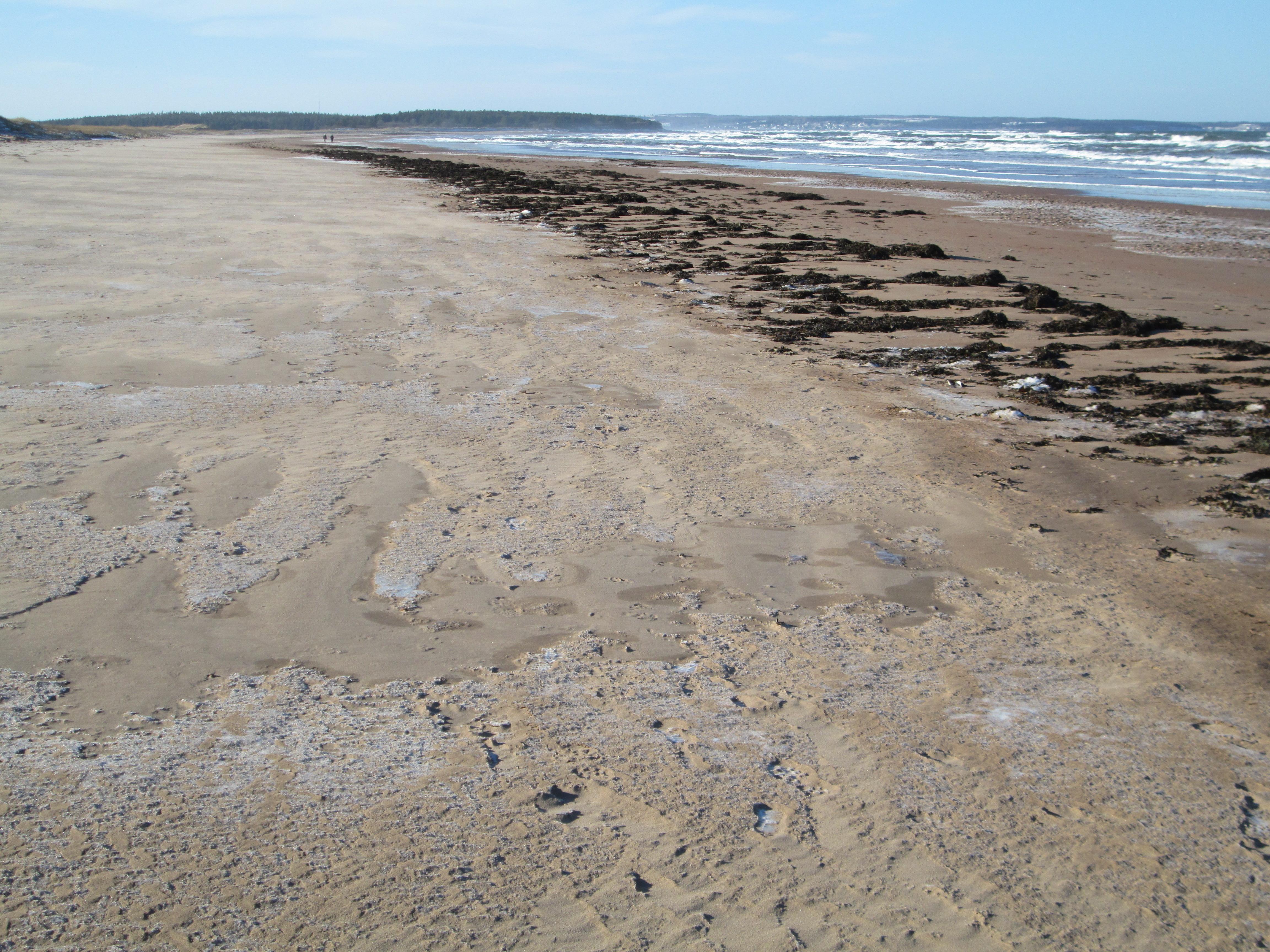 File Brackley Beach Pei National Park 31715281330 Jpg