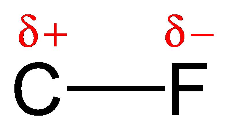 Fluorine+atom+diagram