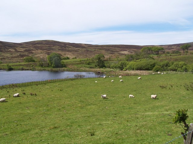 Dalry Moor Road, Caaf Reservoir. North West end