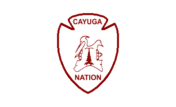 cayuga men Cayuga's spartans compete in the mid-state athletic conference, with njcaa division iii teams in men's and women's basketball, soccer, bowling, golf, men's lacrosse, women's volleyball and women's softball.