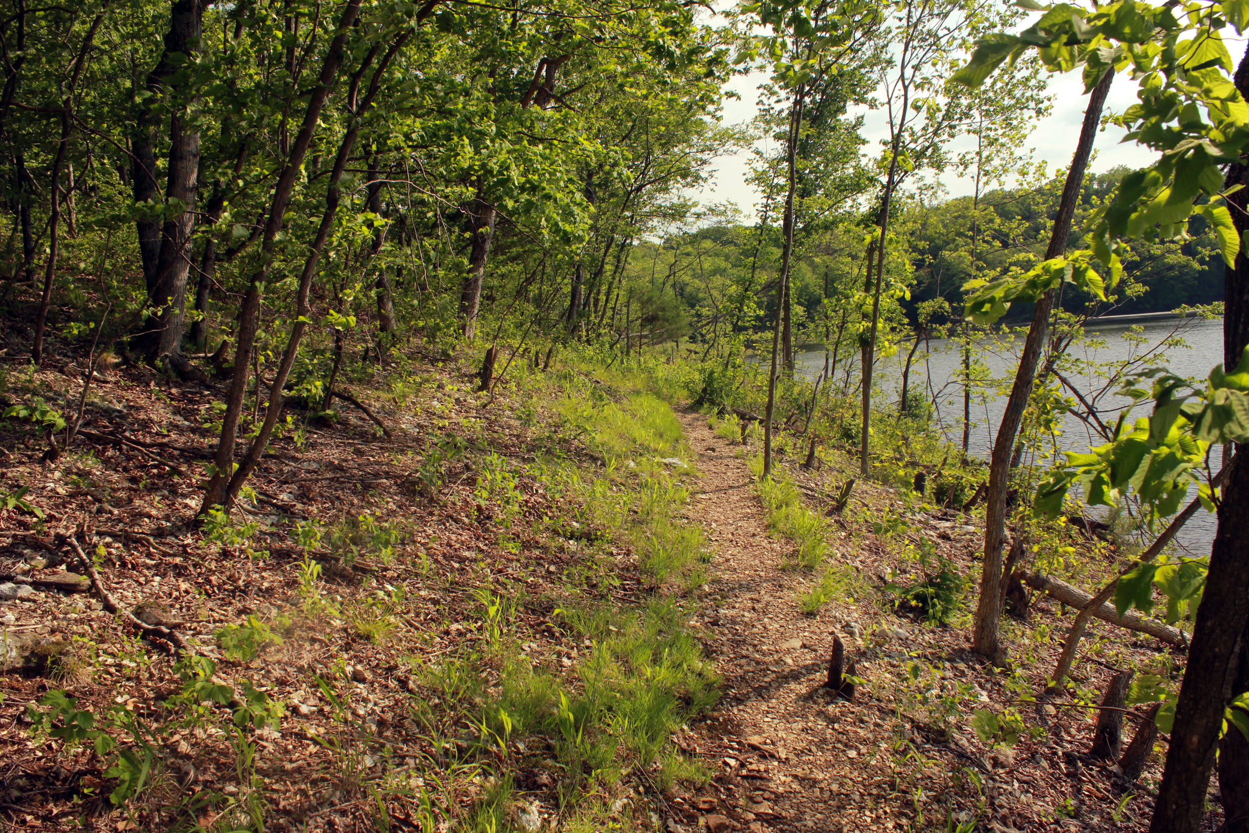 best hiking trails in every state - Missouri - River Scene Trail Loop
