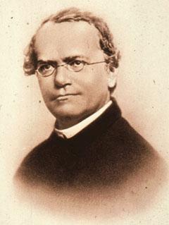 File:Gregor mendel.jpg - Wikimedia Commons