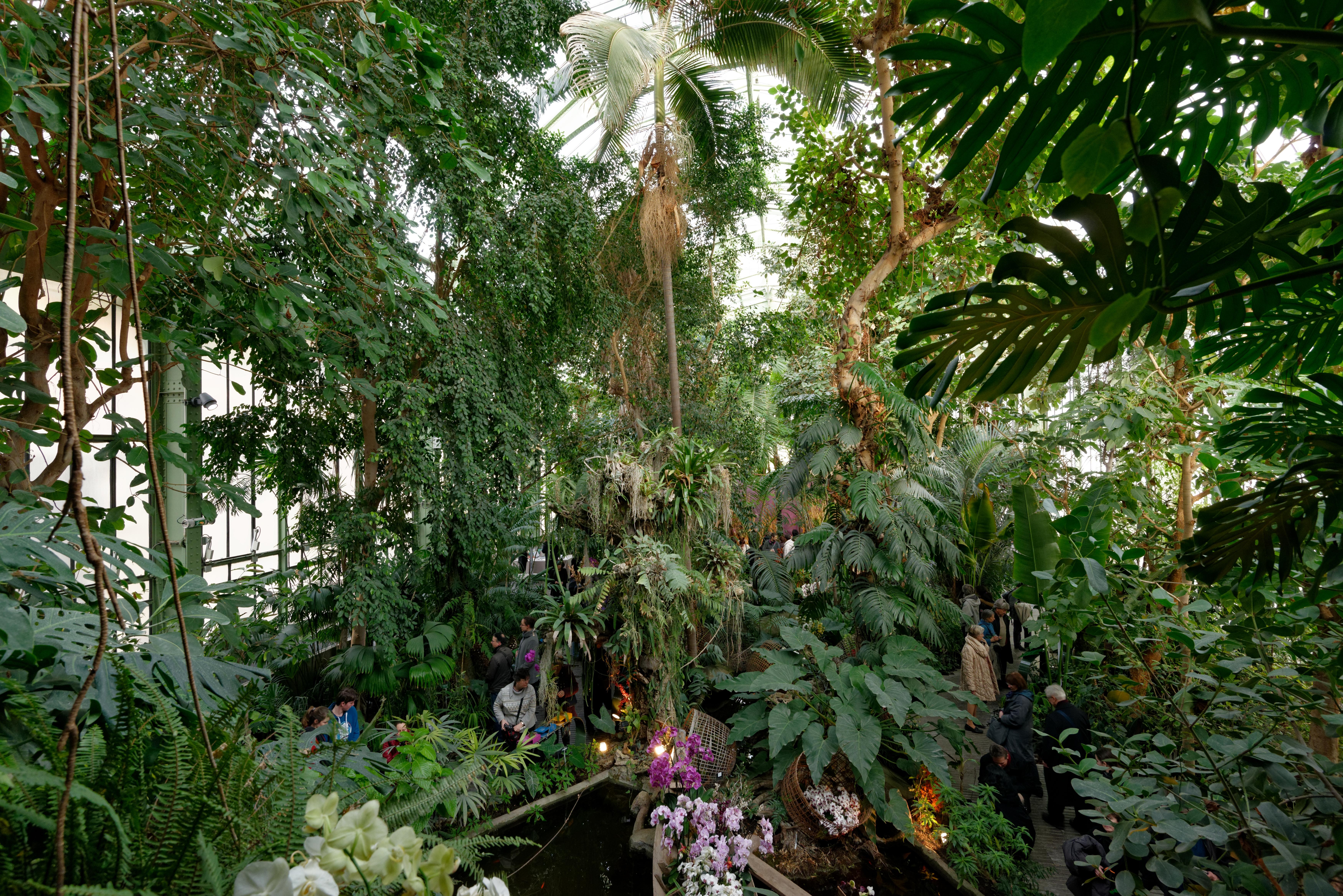 FileInterior main greenhouse Jardin des Plantes 2013 03 15 n02