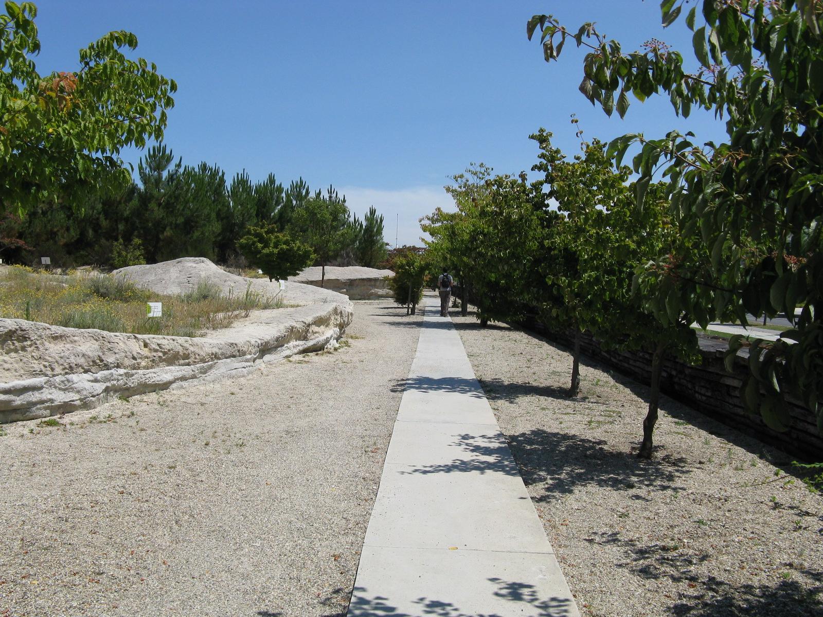 Jardin botanique de bordeaux wikiwand for Bal des citrouilles jardin botanique