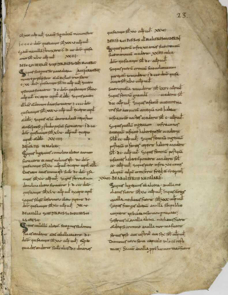 Файл:Lex Salica (MS 1348) 09.jpg