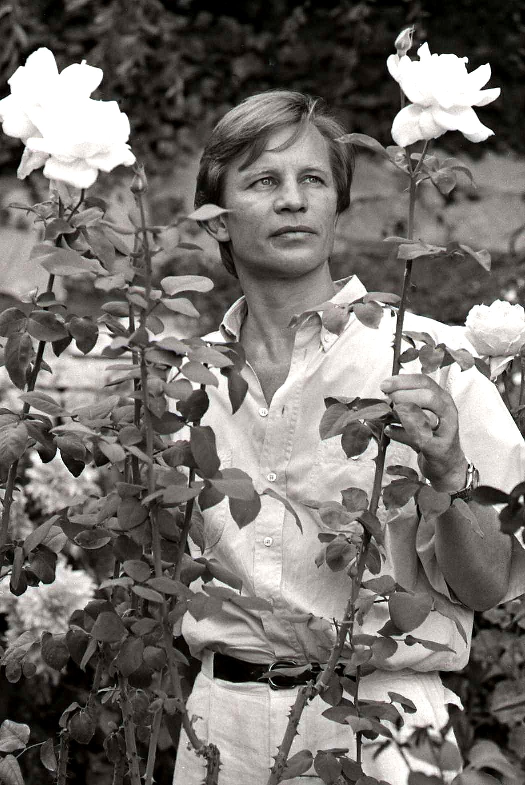Michael_York_%26_york_roses_Allan_Warren