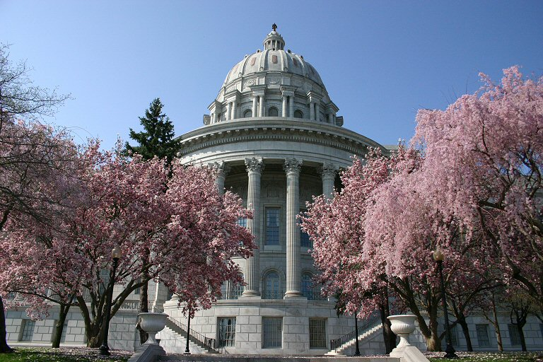 Fasciculus:Missouri state capitol with flowering dogwood.jpg