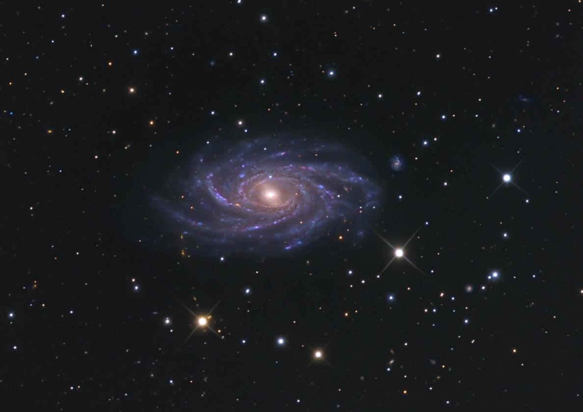 NGC 2336 – Wikipedia