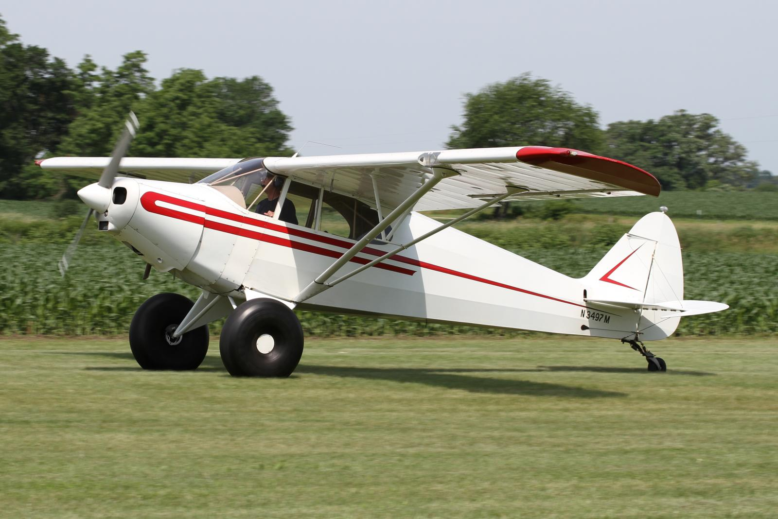 File Piper Pa 12 Super Cruiser N3497m Jpg Wikimedia