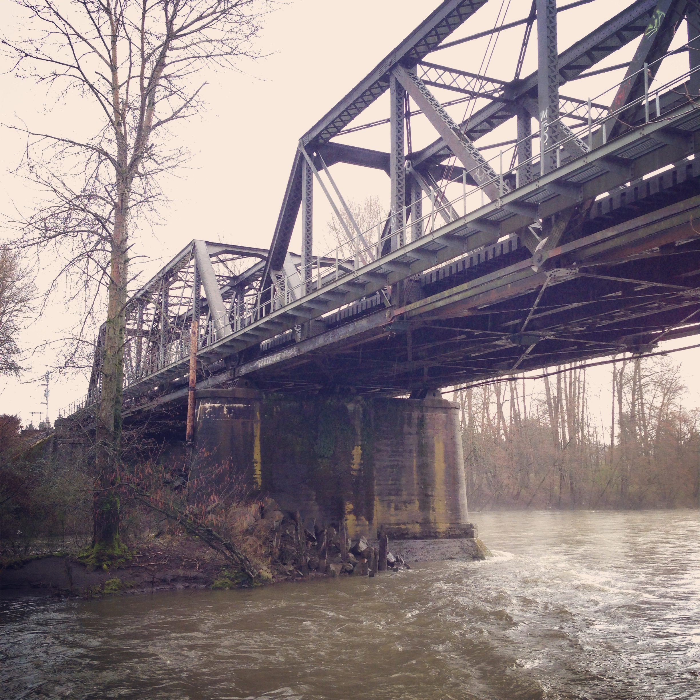 List of crossings of the Puyallup River - Wikipedia