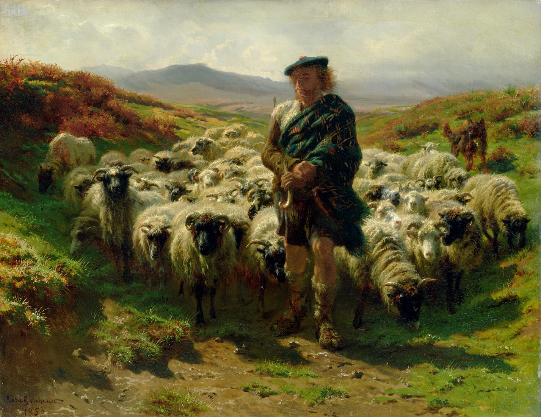 File Rosa Bonheur The Highland Shepherd Jpg