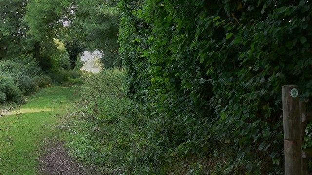 Staunton Way at Finchdean - geograph.org.uk - 1434277