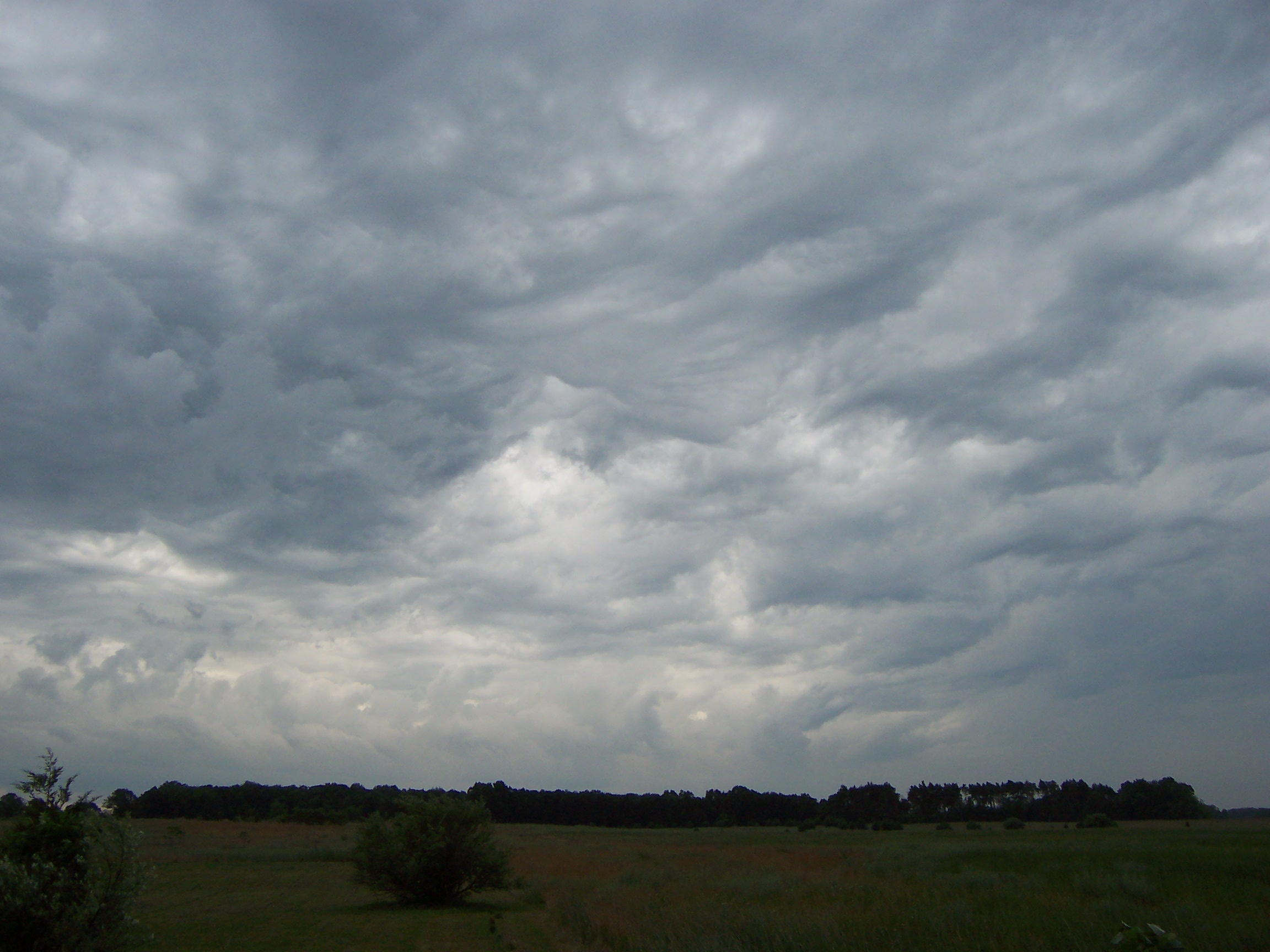 File:Cirrostratus and Stratocumulus clouds in August 2006 ... |Stratocumulus Clouds Description