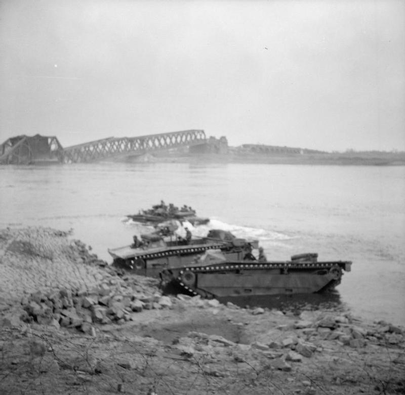 Buffaloes crossing the Rhine