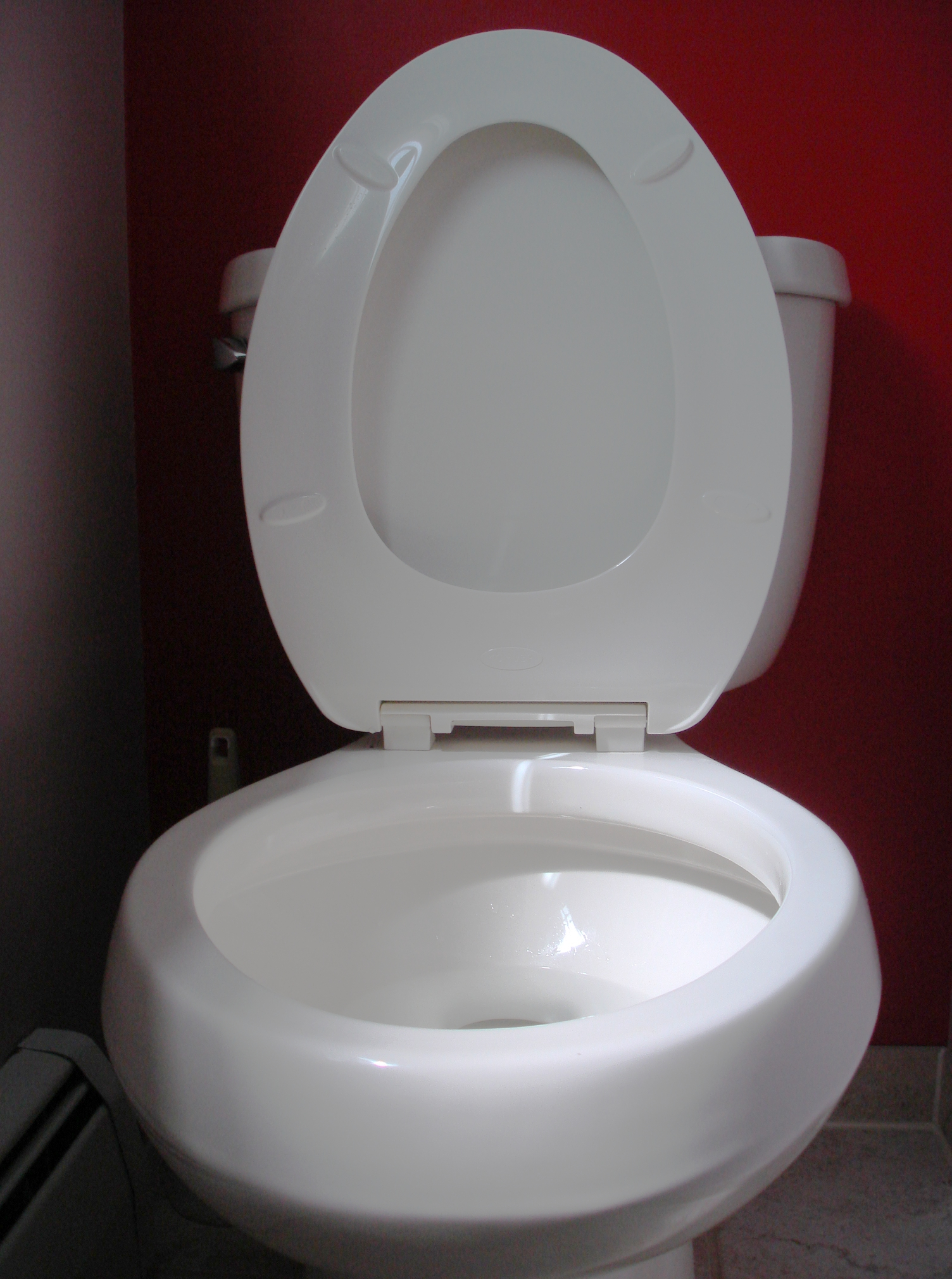 File:Toilet seat up.JPG - Wikimedia Commons