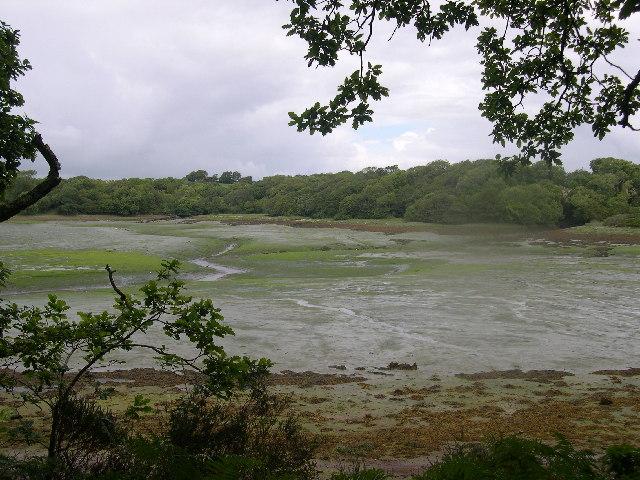 View across Garron Pill - geograph.org.uk - 65098