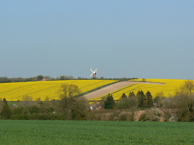 Wilton Windmill view from near East Grafton - geograph.org.uk - 402653