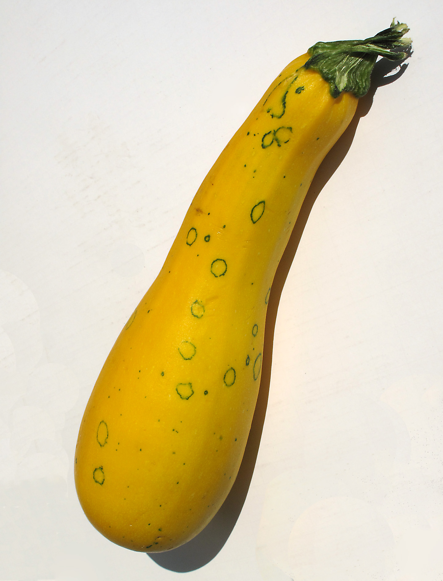 how to cut yellow squash