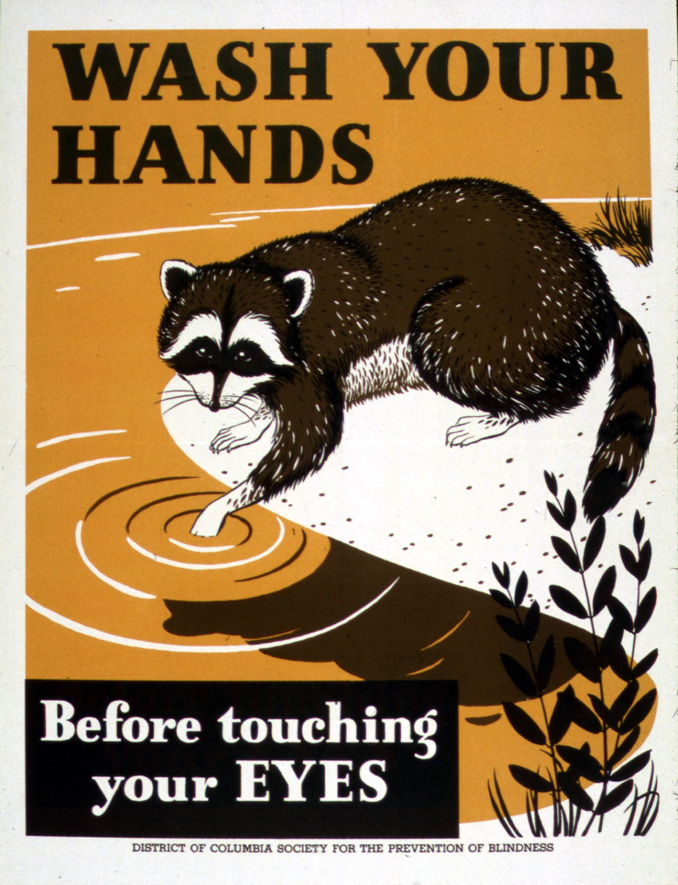 One simple way of fighting off germs involves the use of soap and water. (Credit: U.S. National Archives and Records Administration)