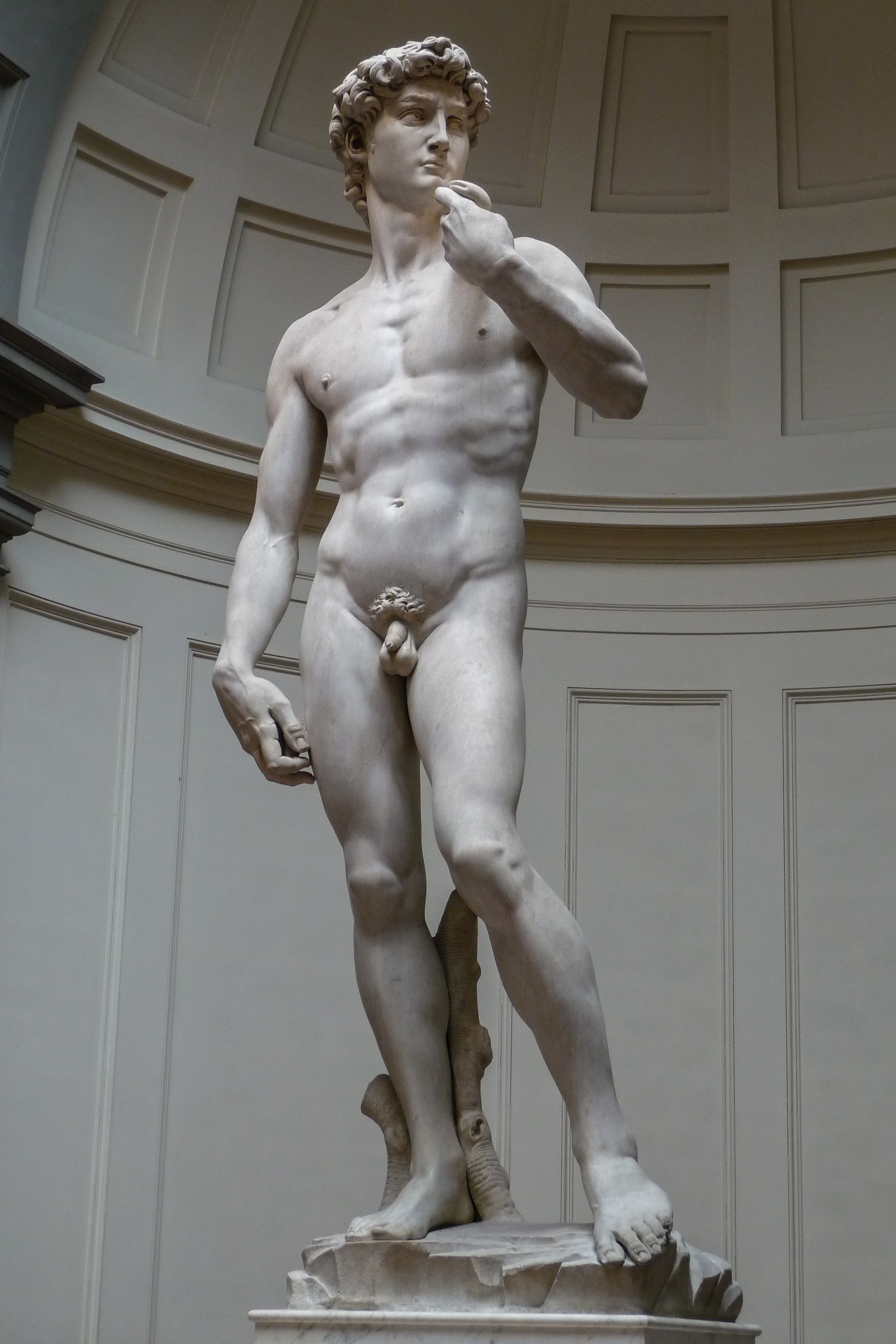 Michelangelo s david phrase, simply