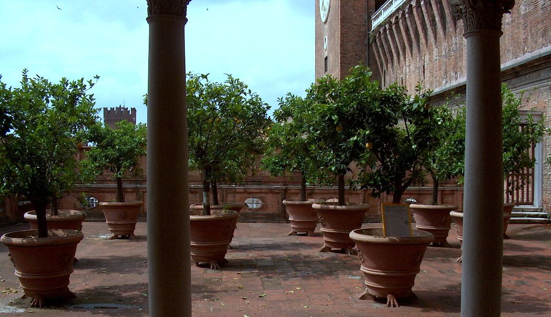 File castello estense il giardino degli aranci un micromondo meraviglioso jpg wikimedia - Il giardino degli aranci ...