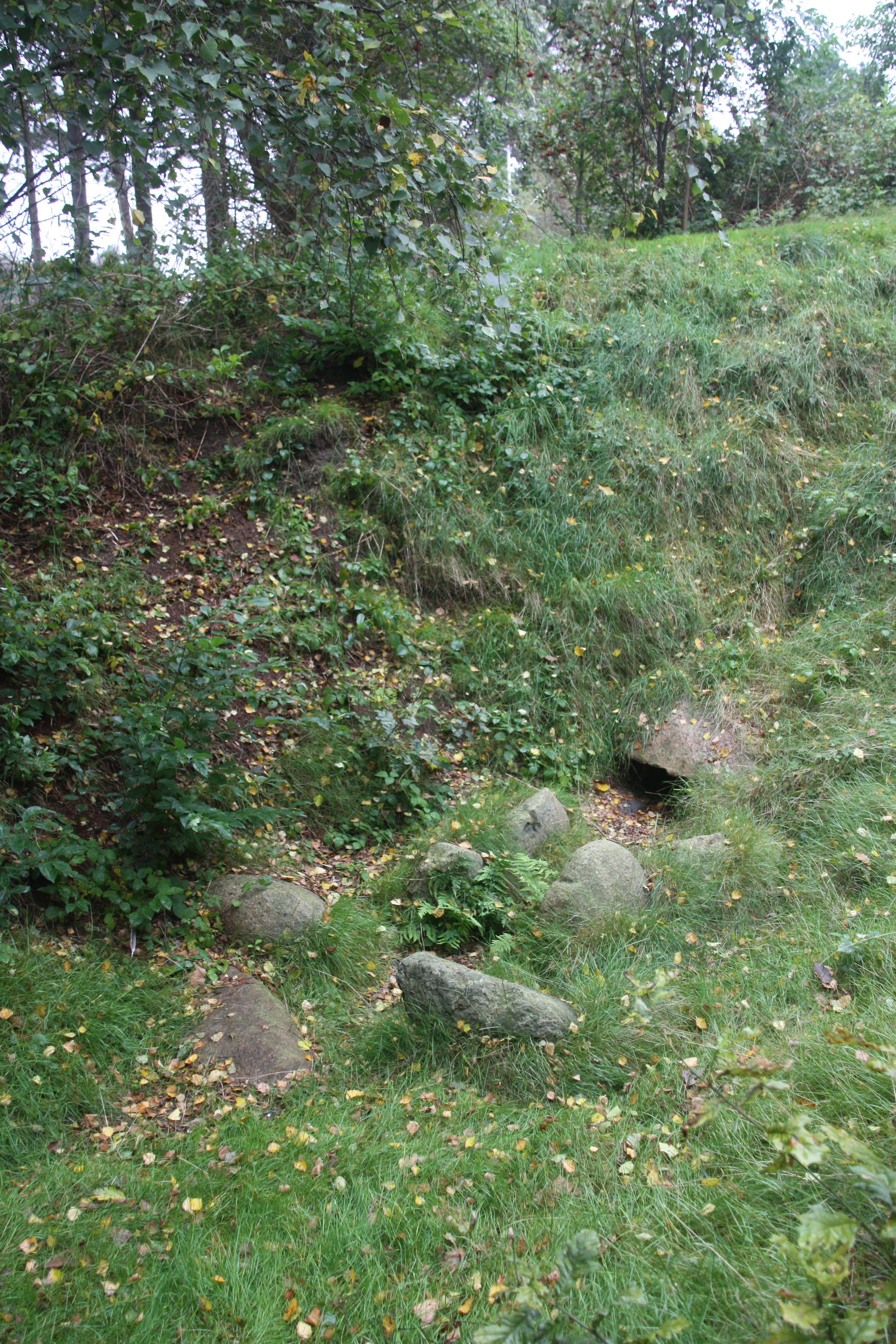 Datei:Dolmen steennodde kammer.jpg – Wikipedia