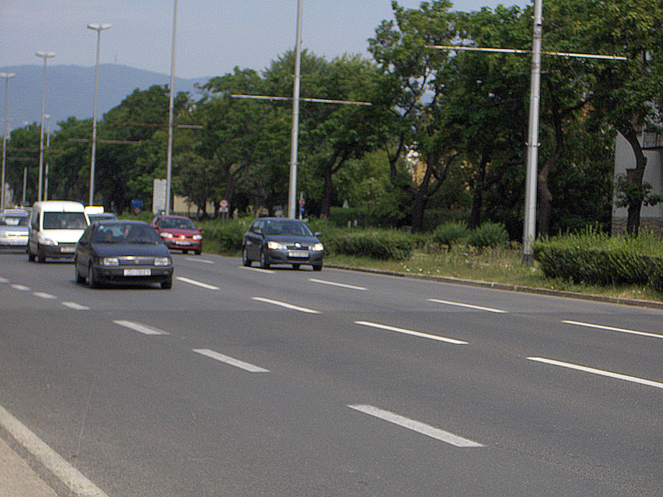 Marin Drzic Avenue Wikipedia