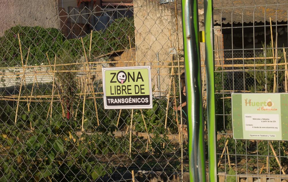 El Caminito se declara ZONA LIBRE DE TRANSGÉNICOS
