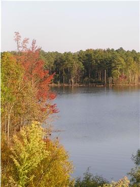 Falls Lake NC eigen foto