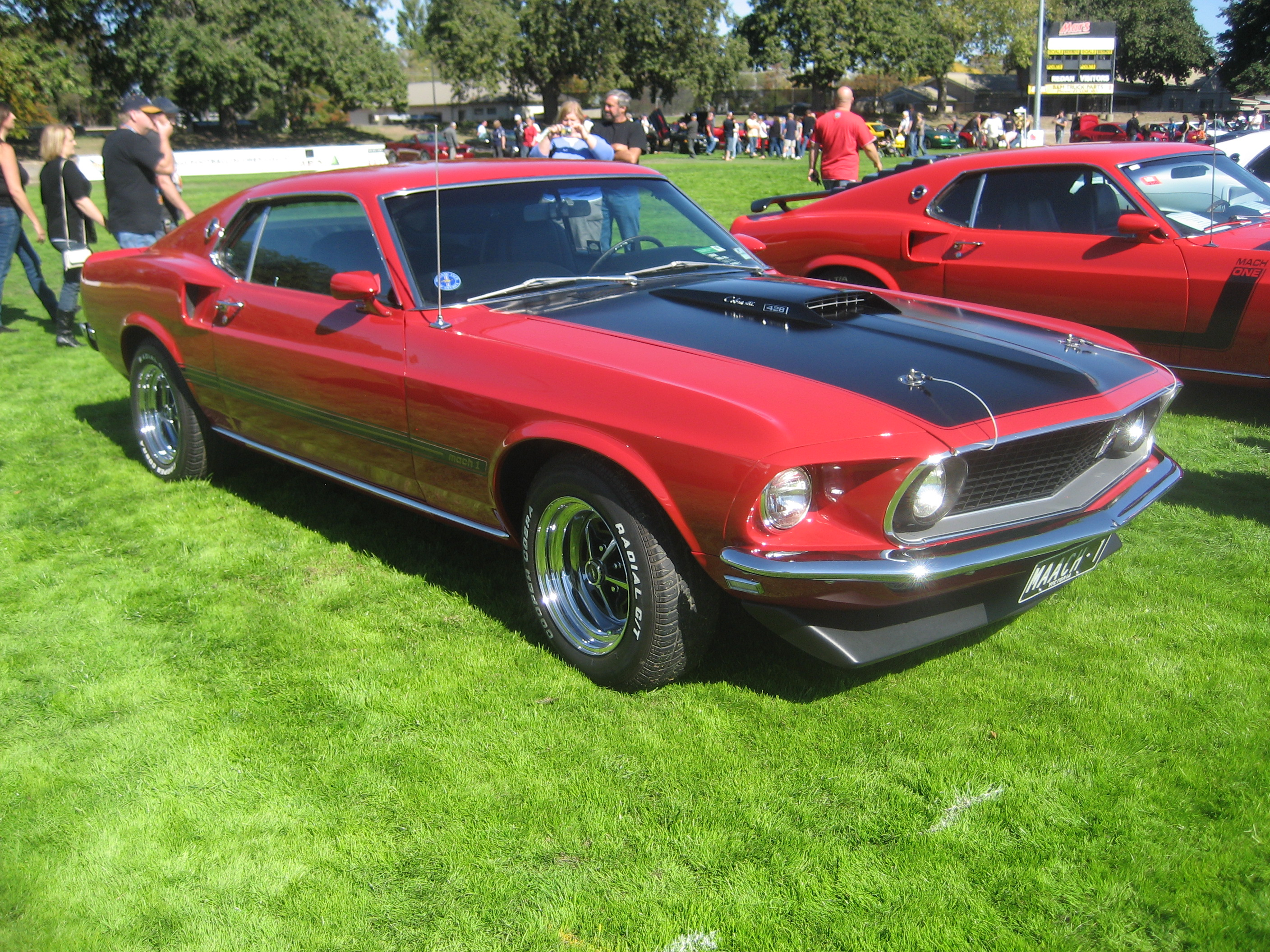 Fileford mustang 428 cobra jet 1969 3 jpg