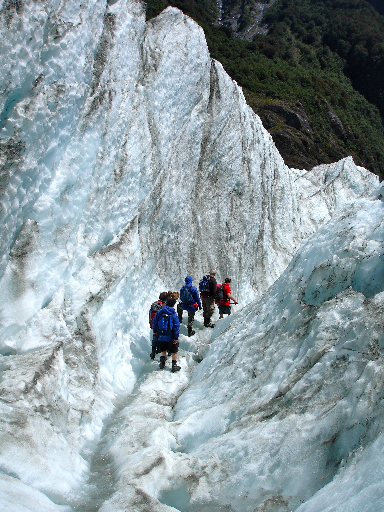 File:Franz Joseph Glacier Hike (3424235146) jpg - Wikimedia