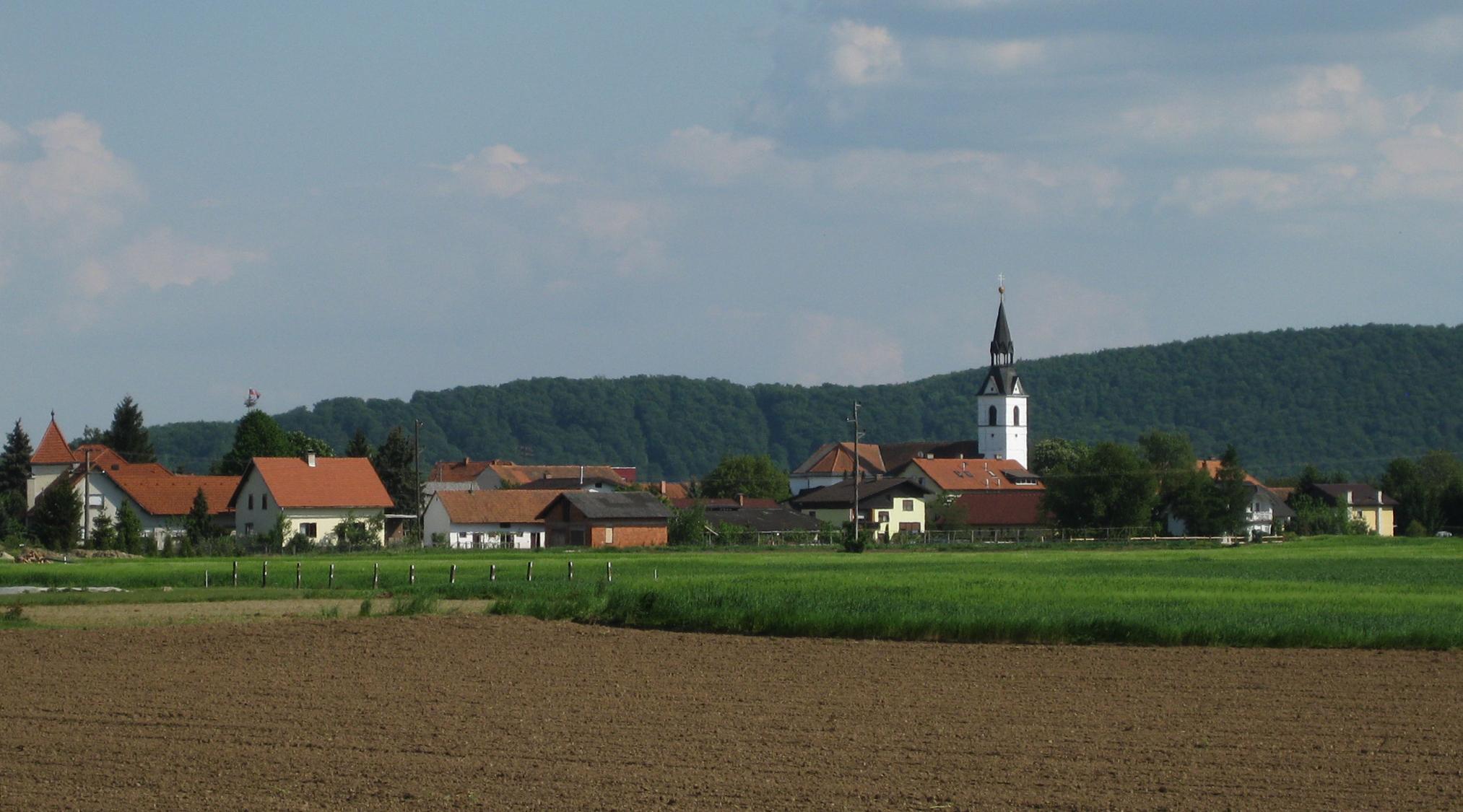 Gorišnica