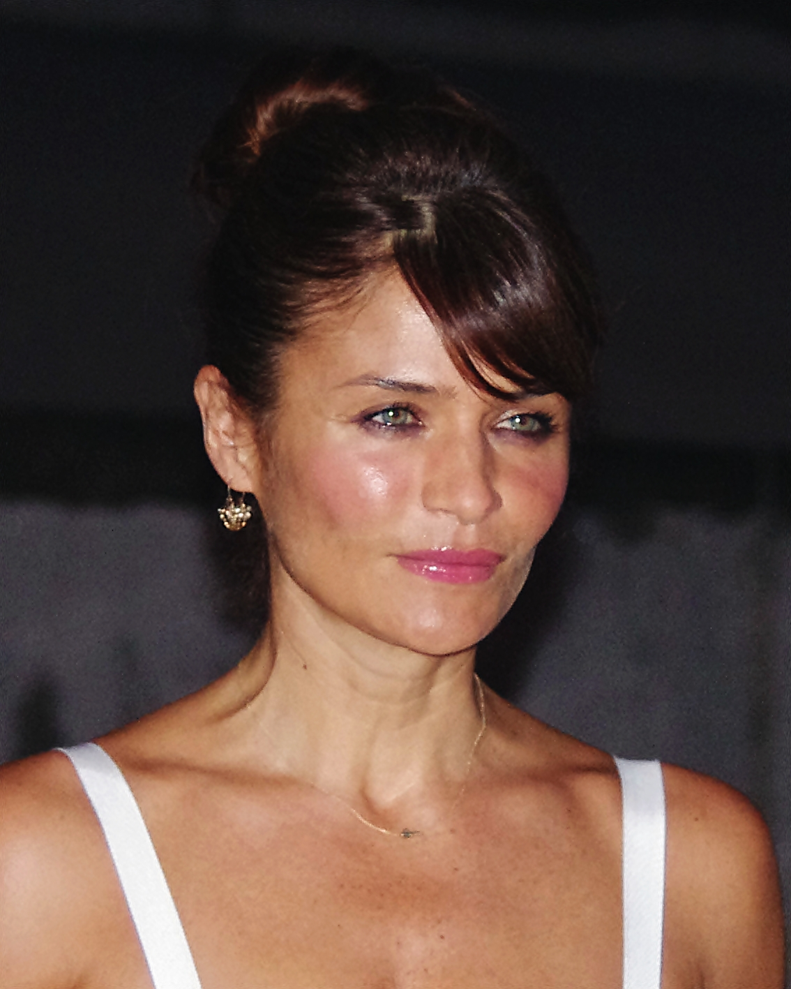 The 49-year old daughter of father (?) and mother(?) Helena Christensen in 2018 photo. Helena Christensen earned a  million dollar salary - leaving the net worth at 8 million in 2018