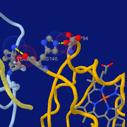 File:Jmol screenshot hemoglobin.png