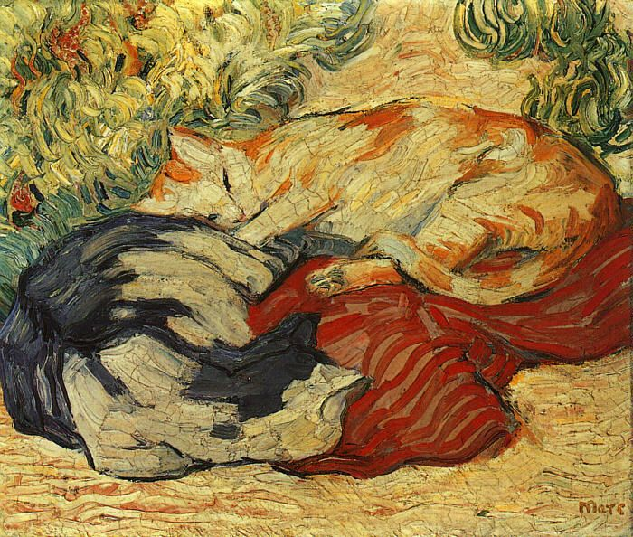 Marc-cats_on_a_red_cloth.jpg