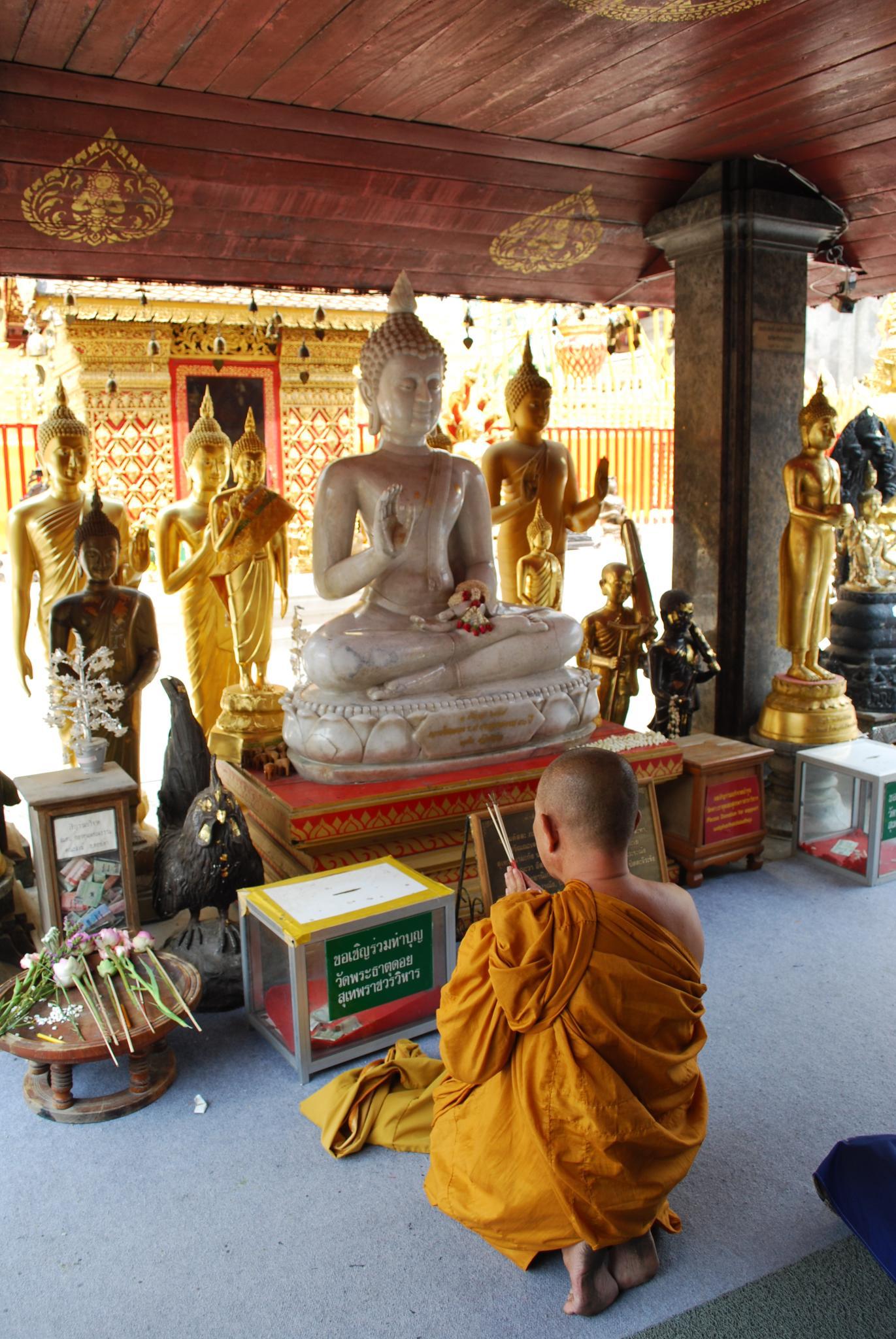 Buddhist Monk Praying To Buddha | www.pixshark.com ...