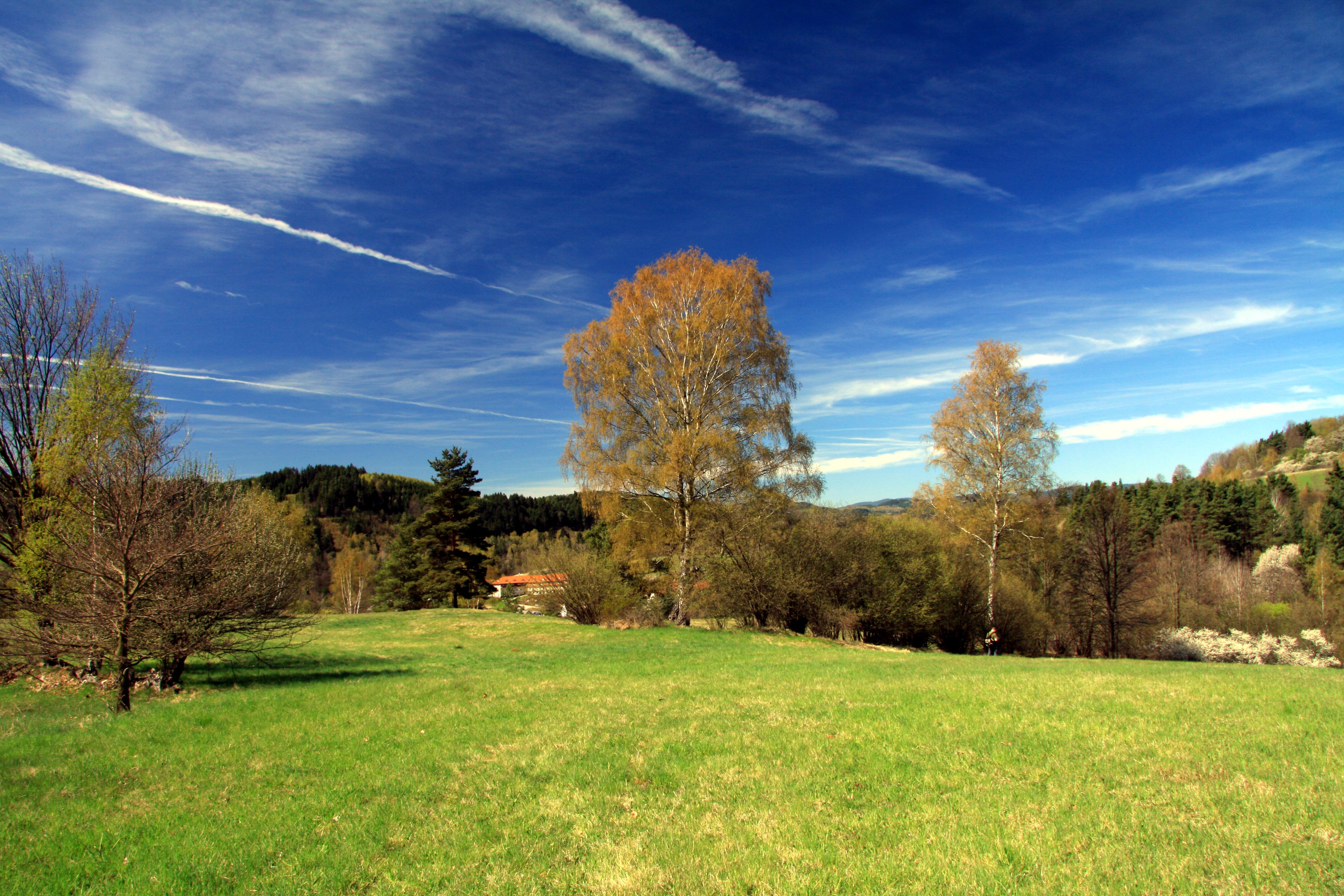 National nature reserve Vyšenské kopce in spring 2012 (16).JPG